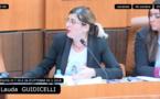 Unanimité de l'Assemblée de Corse pour le soutien à la Ligue